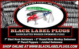 Black-Label-Plugs.jpg