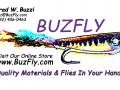 BuzFly-Logo-Banner